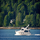 Yacht Passes Forest And Houses On Hot Day - VideoHive Item for Sale