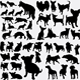 150+ Dogs Collection Silhouette - GraphicRiver Item for Sale