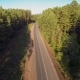 Cars On The Road In The Forest, Aerial View - VideoHive Item for Sale