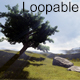 The Lonely Tree - VideoHive Item for Sale