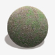 Gravel Weeds Seamless Texture