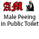 Male Peeing in Public Toilet
