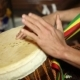 African Percussion - Traditional Music.  Of Man's Hands Drumming Out a Beat On An African Skin - VideoHive Item for Sale