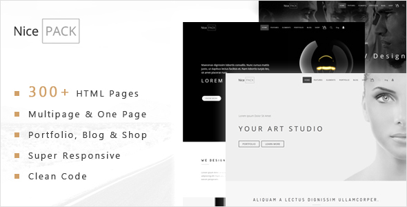 NicePACK – Multipurpose One Page & Multipage Responsive HTML5 Template