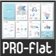 Pro Flat Infographic Brochure. Set 6 - GraphicRiver Item for Sale