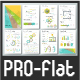 Pro Flat Infographic Brochure. Set 5 - GraphicRiver Item for Sale