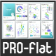 Pro Flat Infographic Brochure. Set 1 - GraphicRiver Item for Sale