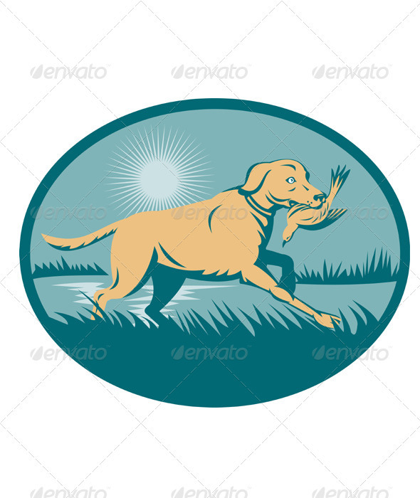 Golden Retriever Hunting Dog With Bird - Animals Characters