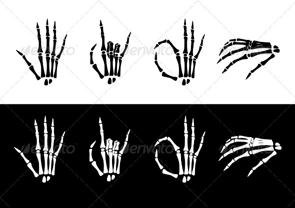 Set of hand anatomy. - Decorative Vectors