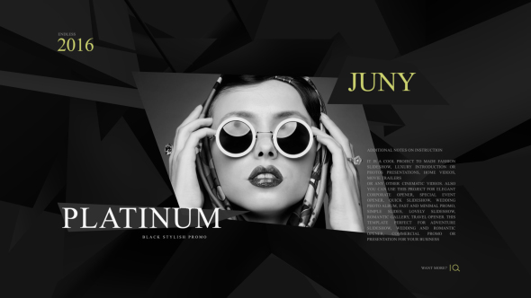 Platinum Fashion Promo