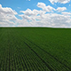 Agriculture - VideoHive Item for Sale