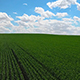 Aerial Agriculture - VideoHive Item for Sale