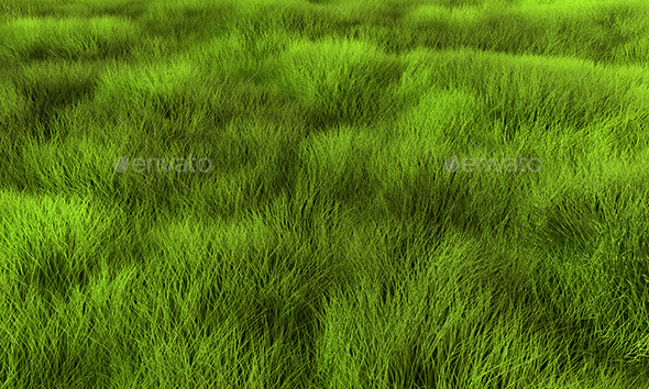 Grass - 3D Backgrounds