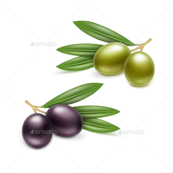 Black Green Olives Branches Leaves - Food Objects