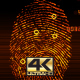 Fingerprint Scan v3 - VideoHive Item for Sale