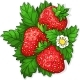 Ripe Juicy Strawberries - GraphicRiver Item for Sale