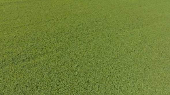 grass field aerial. Contemporary Aerial Play Preview Video And Grass Field Aerial E