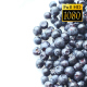 Rotation Blueberries - VideoHive Item for Sale