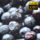 Rotation Blueberries 2 - VideoHive Item for Sale