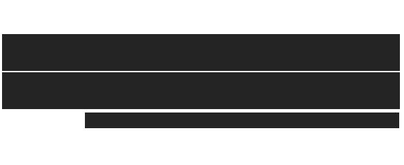 Logo electric bricks 590x242