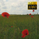 Poppies On The Field 2 - VideoHive Item for Sale