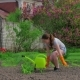 Girl Watering Flowers That Just Planted - VideoHive Item for Sale