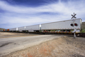long cargo train moving goods - PhotoDune Item for Sale