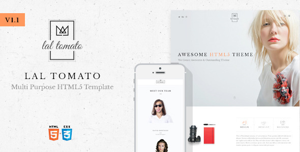 Lal Tomato | Multi-purpose HTML5 Template - Creative Site Templates
