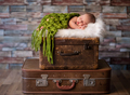 Little newborn baby sleeping on rustic  suitcases - PhotoDune Item for Sale