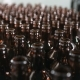 Line Supply Of Bottles At The Brewery - VideoHive Item for Sale