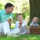 Family Picnic In The Park On The Lawn - VideoHive Item for Sale