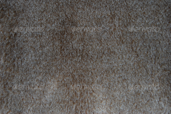 Fur - Fabric Textures