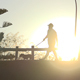 Man Walking Dog - VideoHive Item for Sale