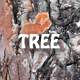 Tree Bark Texture 3 3D - 3DOcean Item for Sale