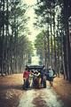Roadtrip Adventure Activity Remote Exploration Concept - PhotoDune Item for Sale
