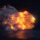 Apex Predator | Lion Reveal - VideoHive Item for Sale