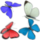 Butterflies Animations Pack - VideoHive Item for Sale