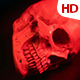Human Skull 0121 - VideoHive Item for Sale