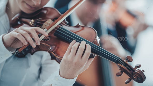 Talented violinist playing with orchestra - Stock Photo - Images