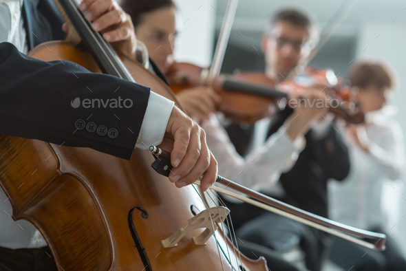 Symphony orchestra performance, string section - Stock Photo - Images