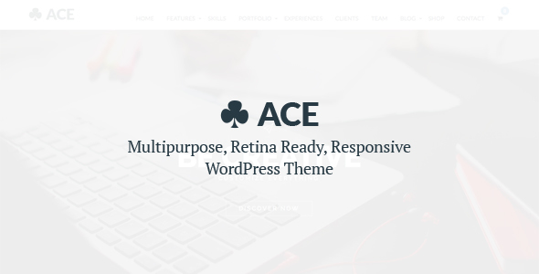 ACE – Responsive, Multi-Purpose, Retina Ready Theme