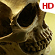 Human Skull 0106 - VideoHive Item for Sale