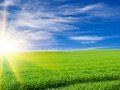 sunset or sunrise in the  green field over blue cloudy sky lands - PhotoDune Item for Sale