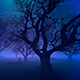 Woods and the Cemetery on the Night of Halloween, - VideoHive Item for Sale