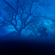 On the Night of Halloween - VideoHive Item for Sale