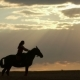 Woman Riding Horse On Field During Sunset - VideoHive Item for Sale