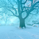 Panorama Winter Forest Park - VideoHive Item for Sale