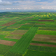 Plowed Fields  - VideoHive Item for Sale