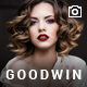 Photography & Video GoodWin WordPress Theme - ThemeForest Item for Sale
