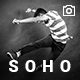 SOHO - Fullscreen Photo & Video WordPress Theme Nulled
